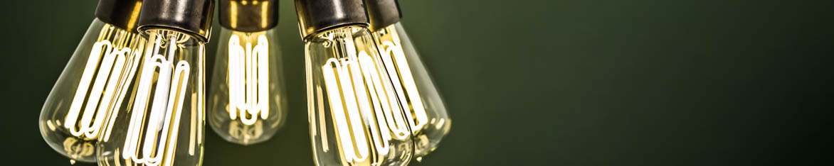 ECO-FILAMENT BULBS